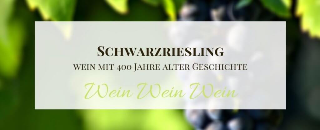Schwarzriesling